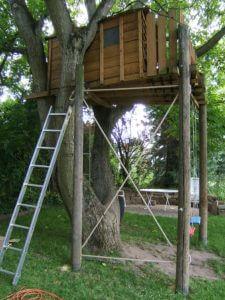 Kletterspinne der Anfang
